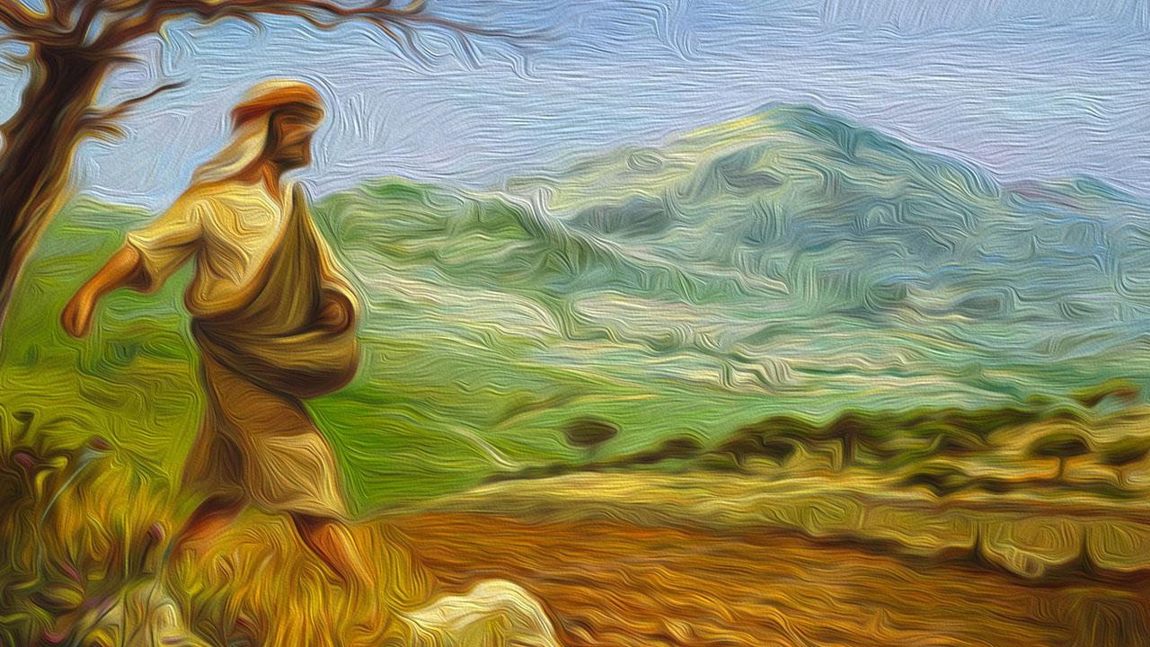 de zaaier protestantse gemeente andijk wervershoof